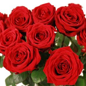 Røde roser på Valentines Day var en kæmpe succes